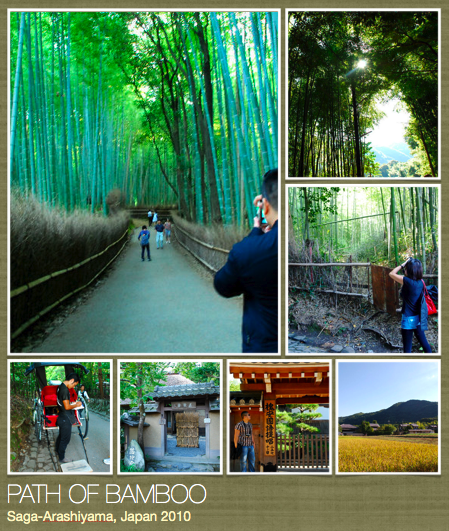 Saga Arashiyama (Path of Bamboo) Copyright  ©  Em Matias-Sulit